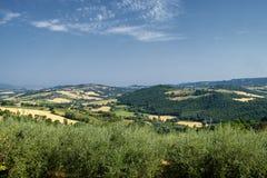 Paesaggio del paese lungo la strada a Todi Fotografie Stock Libere da Diritti