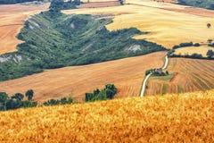 Paesaggio del paese Marche (in Italia) Immagini Stock Libere da Diritti