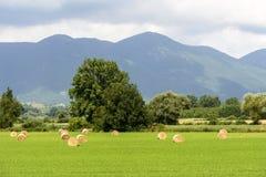 Paesaggio del paese nel Lazio (Italia) Fotografia Stock Libera da Diritti