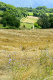 Paesaggio del paese nel Lazio (Italia) Fotografie Stock Libere da Diritti