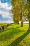Paesaggio del paese su inizio della stagione di autunno Fotografie Stock Libere da Diritti