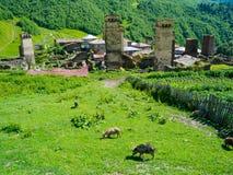 Paesaggio del paese in Svaneti Fotografie Stock Libere da Diritti