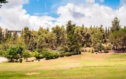 Paesaggio del parco Immagine Stock