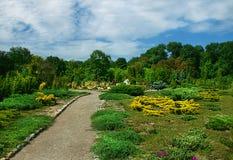 Paesaggio del parco Fotografia Stock