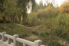 Paesaggio del parco Fotografie Stock