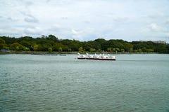 Paesaggio del parco di Ohori Fotografia Stock