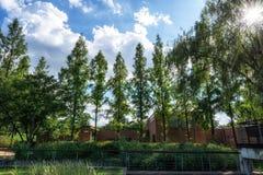 Paesaggio del parco di Seonyudo immagine stock