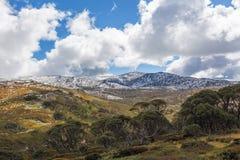 Paesaggio del parco nazionale del monte Kosciuszko Alpi australiane, nuova S Fotografie Stock