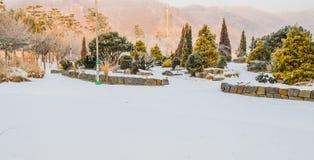 Paesaggio del parco pubblico coperto di neve Fotografie Stock Libere da Diritti