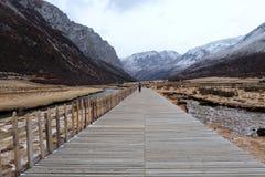 Paesaggio del pascolo di Luorong con il ponte di legno fotografia stock