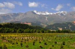 Paesaggio del plateau di Qinghai di cinese Fotografie Stock Libere da Diritti