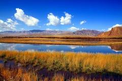 Paesaggio del plateau tibetano nella caduta Fotografia Stock
