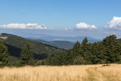 Paesaggio del polacco di estate in montagne di Sudety Immagine Stock