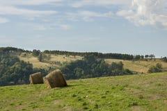 Paesaggio del polacco di estate in montagne di Sudety Fotografia Stock