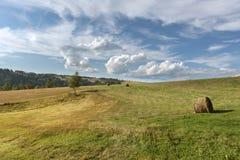 Paesaggio del polacco di estate in Sudety Fotografia Stock Libera da Diritti