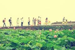 Paesaggio del ponte rotto lago ad ovest di Hangzhou immagine stock libera da diritti