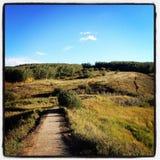 Paesaggio del prato di autunno immagine stock