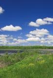 Paesaggio del prato e del lago Fotografia Stock