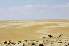 Paesaggio del quarto vuoto, Al Khali Desert dello sfregamento Immagini Stock Libere da Diritti