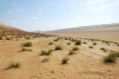 Paesaggio del quarto vuoto, Al Khali Desert dello sfregamento Fotografie Stock Libere da Diritti
