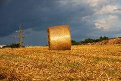 Paesaggio del raccolto Immagini Stock