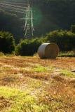 Paesaggio del raccolto Fotografia Stock Libera da Diritti