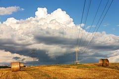 Paesaggio del raccolto Fotografie Stock Libere da Diritti