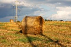 Paesaggio del raccolto Fotografie Stock