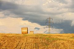Paesaggio del raccolto Immagine Stock Libera da Diritti