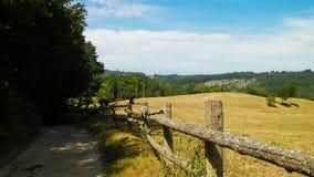 Paesaggio del ranch nella regione di Wiezyca, Kashubia, Polonia fotografia stock libera da diritti