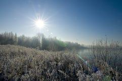 Paesaggio del sole di inverno Immagine Stock Libera da Diritti
