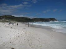 Paesaggio del sud australiano della costa con la gente sulla spiaggia Immagine Stock Libera da Diritti