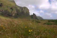 Paesaggio del sud dell'Islanda con outwash vulcanico Fotografia Stock