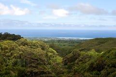 Paesaggio del sud dell'Isola Maurizio Fotografia Stock