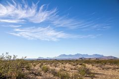 Paesaggio del sud del Texas vicino al grande parco nazionale della curvatura, il Texas Fotografia Stock Libera da Diritti