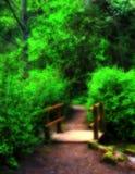Paesaggio del terreno boscoso Fotografie Stock Libere da Diritti