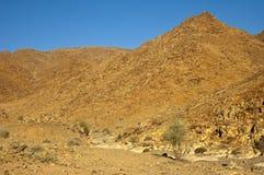 Paesaggio del tipo di deserto selvaggio nel Richtersveld Fotografie Stock Libere da Diritti