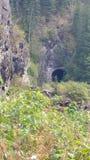 Paesaggio del tunnel Fotografia Stock