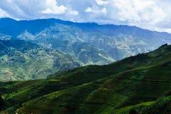 Paesaggio del Vietnam: Terrazzi del riso alla MU Cang Chai, Yen Bai, Vietnam Fotografia Stock