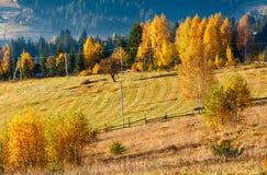 Paesaggio del villaggio di Autumn Carpathian, Ucraina Fotografia Stock