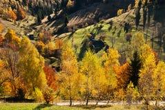 Paesaggio del villaggio in Romania Fotografia Stock