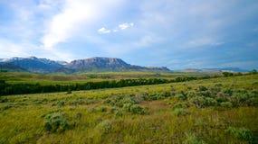 Paesaggio del Wyoming Fotografia Stock