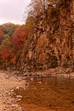 Paesaggio dell'acero di autunno fotografia stock