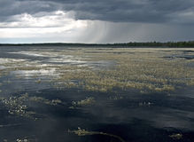 Paesaggio dell'acqua con le nubi Fotografia Stock Libera da Diritti