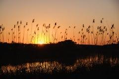 Paesaggio dell'acqua del sole del fiume di tramonto colorful fotografie stock libere da diritti
