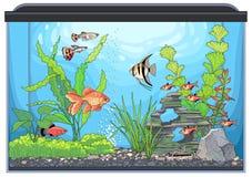 Paesaggio dell'acquario illustrazione vettoriale