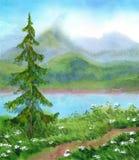 Paesaggio dell'acquerello Abete rosso vicino alla traccia su una collina Immagini Stock
