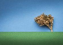 Paesaggio dell'albero della marijuana Immagini Stock