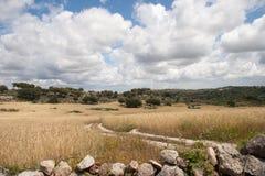 Paesaggio dell'Alentejo Fotografie Stock Libere da Diritti