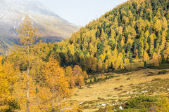 Paesaggio dell'alpe di autunno Fotografia Stock Libera da Diritti